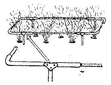 Как сделать ограждение кустов из старой раскладушки