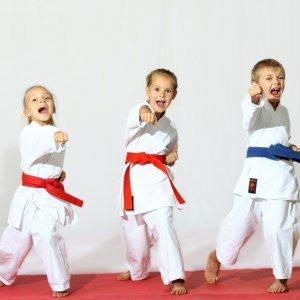 Школа Айкидо - спортивные секции в Балаково