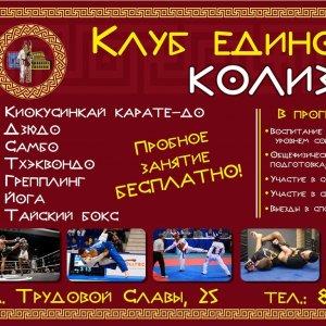 Единоборства в Краснодаре - спортивные секции в Краснодаре